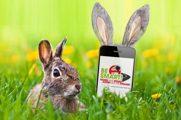 Hase und Smartphone im Gras